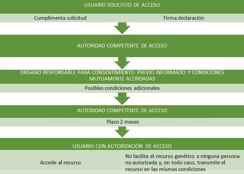 Acceso_img