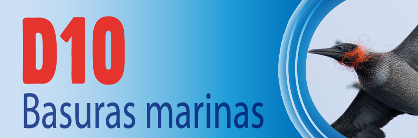 Descriptor 19 - Basuras marinas